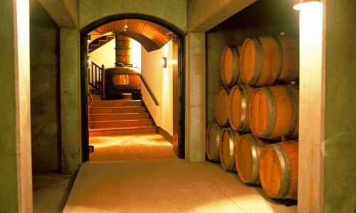 Mision-4-cellar-interior-Web
